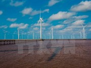 Bac Lieu attractive to foreign wind power firms