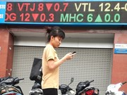 VN-Index rebounds on blue chips