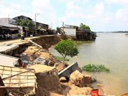 Mekong blighted by river erosion