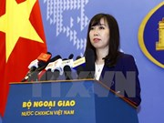 Vietnam employs prompt measures to protect citizen in RoK:Spokesperson