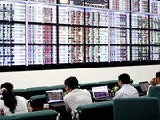 Positive Q2 reports to drive up VN stocks