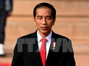 Indonesian President Joko Widodo to visit Turkey