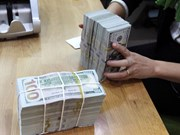 Foreign exchange reserves at record high of 42 billion USD