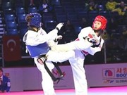 Vietnamese taekwondo athlete wins gold in RoK