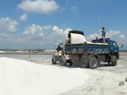 Unsold salt volume falls in first six months