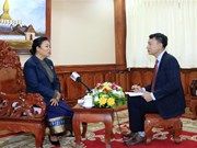 Vietnam-Laos relations grow intensively: Lao official