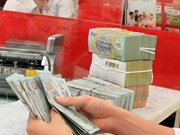Reference exchange rate goes down by another 3 VND