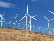 Australia initiates investigation into dumping of VN's wind towers