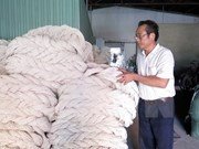 DOC stops anti-dumping investigation against VN polyester fibre