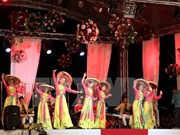 Vietnamese performers take stage at int'l folklore festival