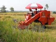 Ninh Thuan invests 1.2 billion VND to agricultural industrialisation