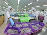 Thua Thien-Hue earns 474.7 million USD in export revenue