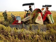 SVEAM works to boost export of Vietnamese agricultural machinery
