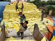 Temporary duties on fertiliser may hurt farmers