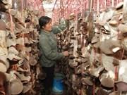 Vietnamese, Lao provinces implement hi-tech agriculture project