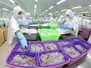 Seafood exports roses by 18.1 percent in 8 months