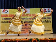 Ninth Vietnam-India friendship festival opens in Indian city