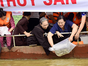 Mass fish release on Lo River on Vu Lan fest