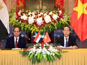 Vietnamese, Egyptian Presidents seek stronger cooperation