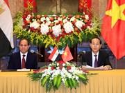 Vietnamese, Egyptian Presidents seek stronger cooperation