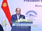 Vietnamese, Egyptian firms explore cooperation opportunities