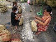 Vocational training aids HCM City's rural folk