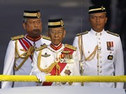 President offers sympathy to Malaysia over former King's death