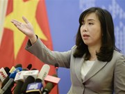 Vietnam resolutely fights corruption: FM spokesperson