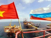 Workshop promotes Vietnam - Russia trade ties