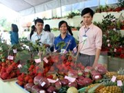 Vegetable, fruit exports hoped to hit record high