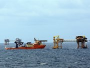 Oil and gas sector urged to adjust business strategy