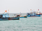Up to 1.87 billion USD projected for offshore fishing development