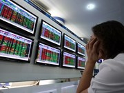 Vietnam's shares fall on intraday profit-taking