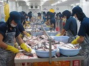 Kien Giang boosts exports in remaining months