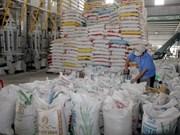 Rice exporters should diversify markets
