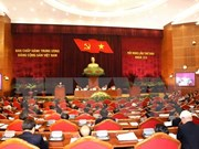 Party Central Committee discusses political system's operation