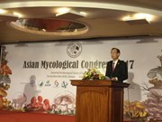 Expert: Vietnam needs more fungi researches