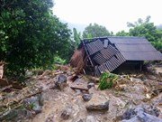 Death toll in floods climbs to 54, Hoa Binh hardest hit