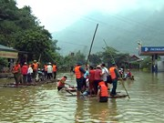 Flood-caused damage amounts to 35 million USD in Hoa Binh