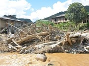 Flood-hit areas brace for diseases