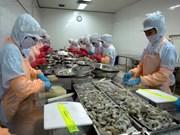 Domestic shrimp exporters need to renovate