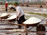 Salt price increases, middlemen benefit