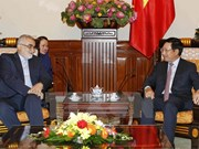 Vietnam, Iran should focus on raising trade: Deputy PM
