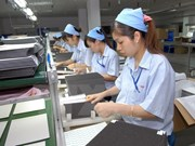Japanese daily Nikkei hails Vietnam's economic development