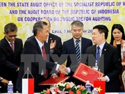 Vietnam, Indonesia step up audit cooperation