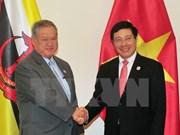 Deputy PM Pham Binh Minh meets Brunei Minister