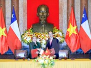 Vietnam, Chile seek stronger comprehensive partnership