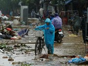 RoK supports Vietnamese flood victims