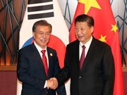APEC 2017: Chinese President meets Japanese, Korean leaders