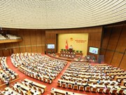 NA deputies debate special policies for HCM City's growth